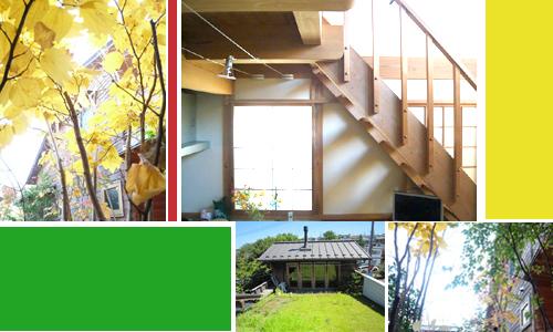 new-house-w.jpg